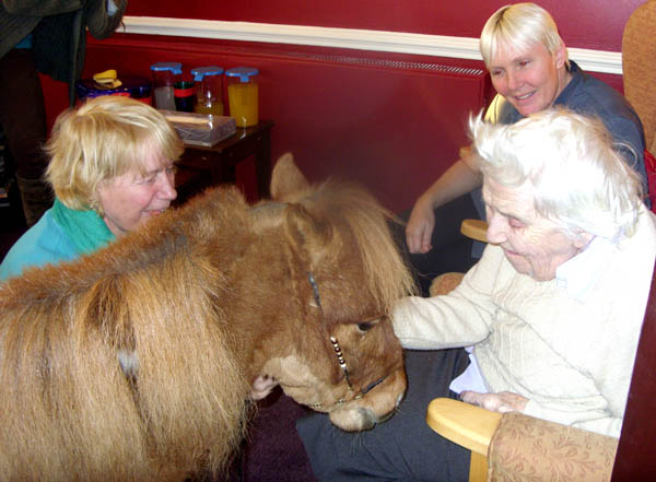Pony Visits Care Home