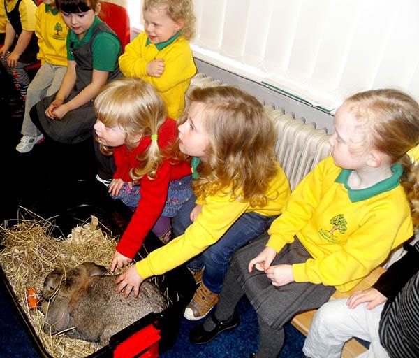 Animal Antics at Sugar Hill Nursery