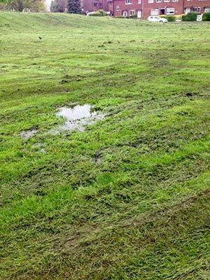 Grasscutting Folly
