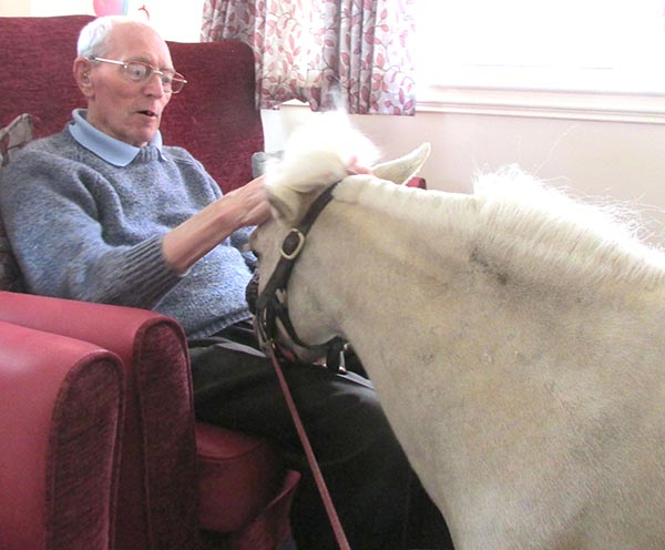 Care Home Residents  Welcome Pony Visit