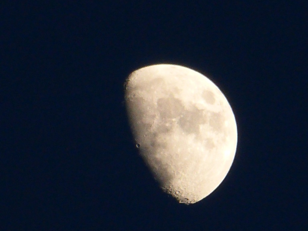 moon john williamson
