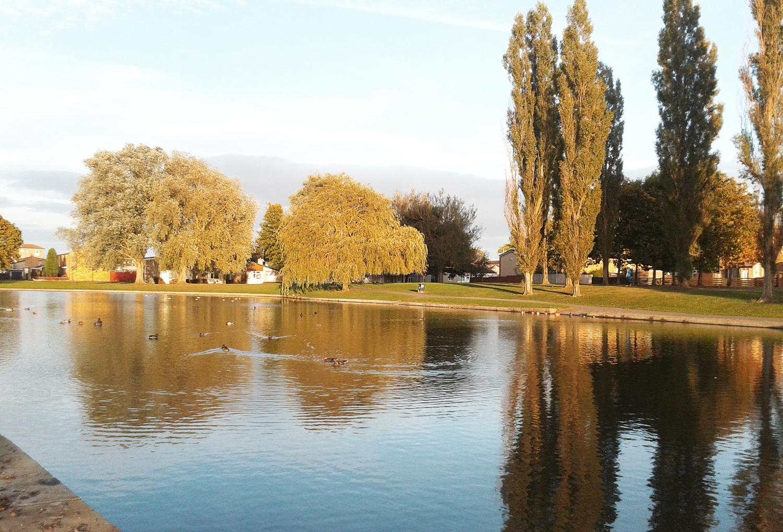 Beautiful West Park Lake