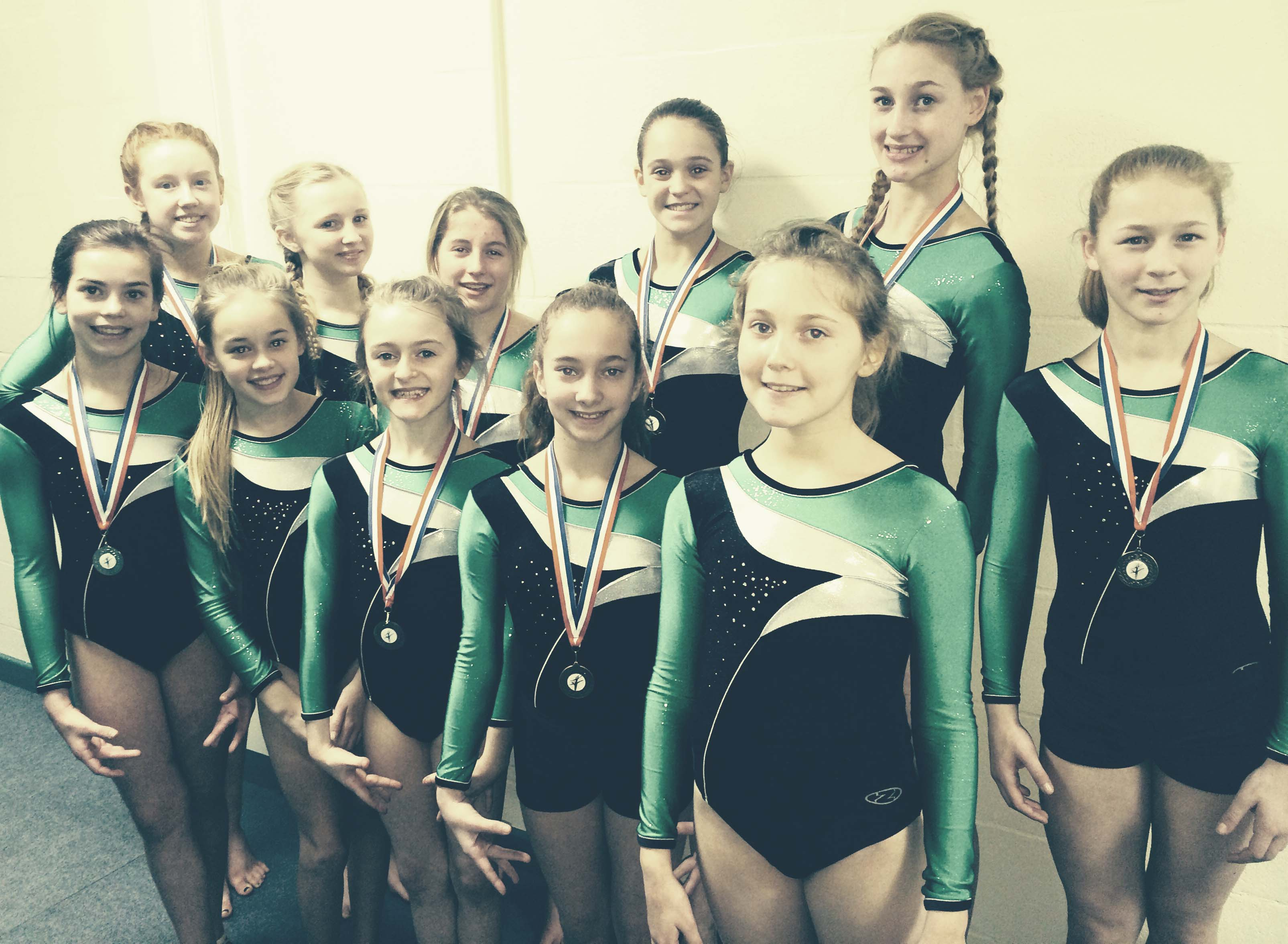 Gymnasts Qualify for National Finals