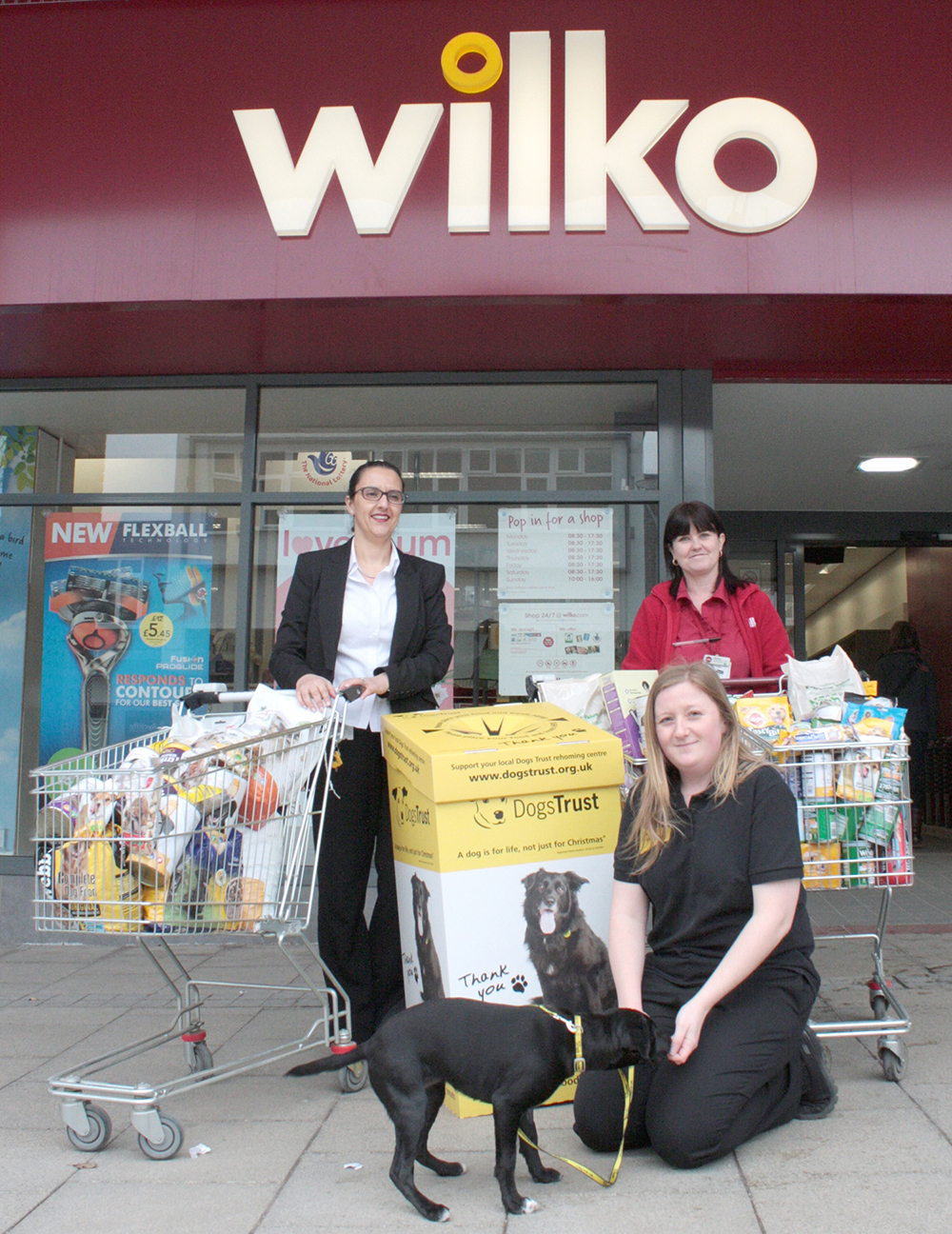 Wilko Customers Help Dog Trust