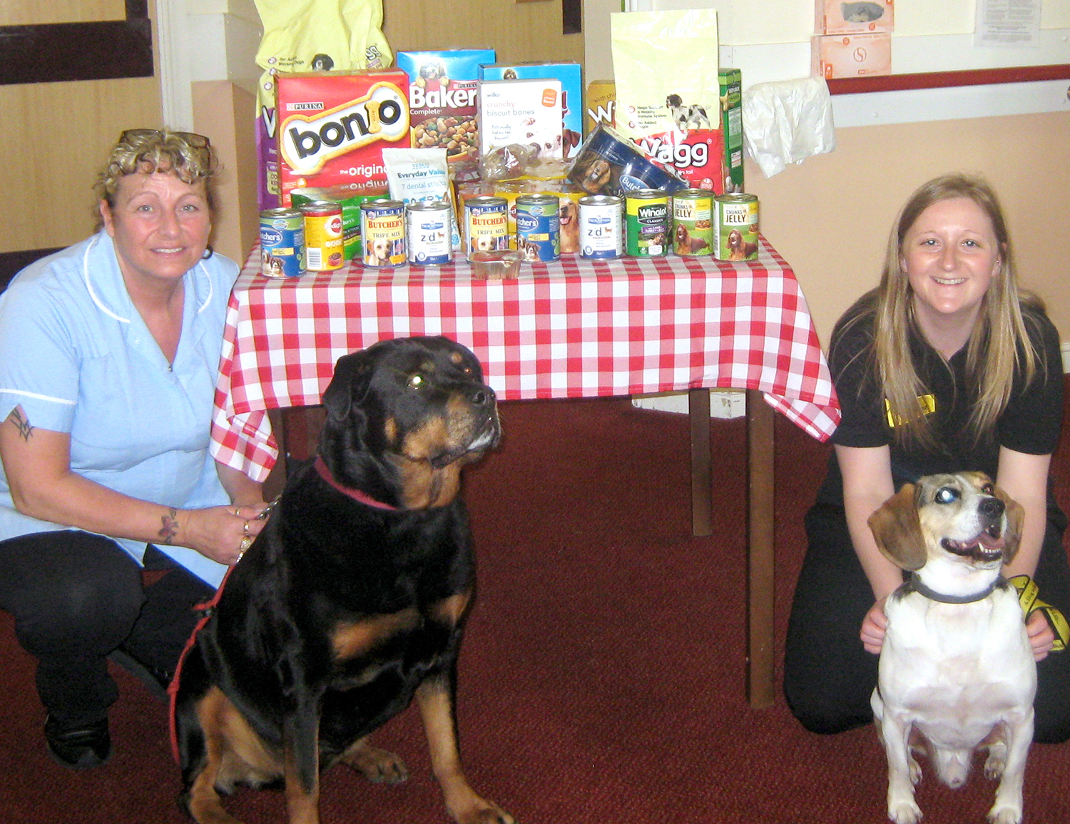 Care Home Aids Dogs Trust