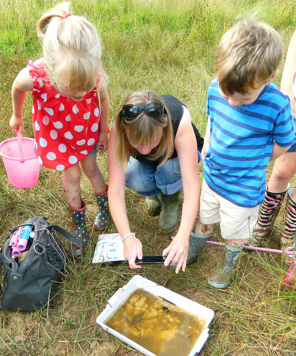 Pond Dipping at Byerley Park