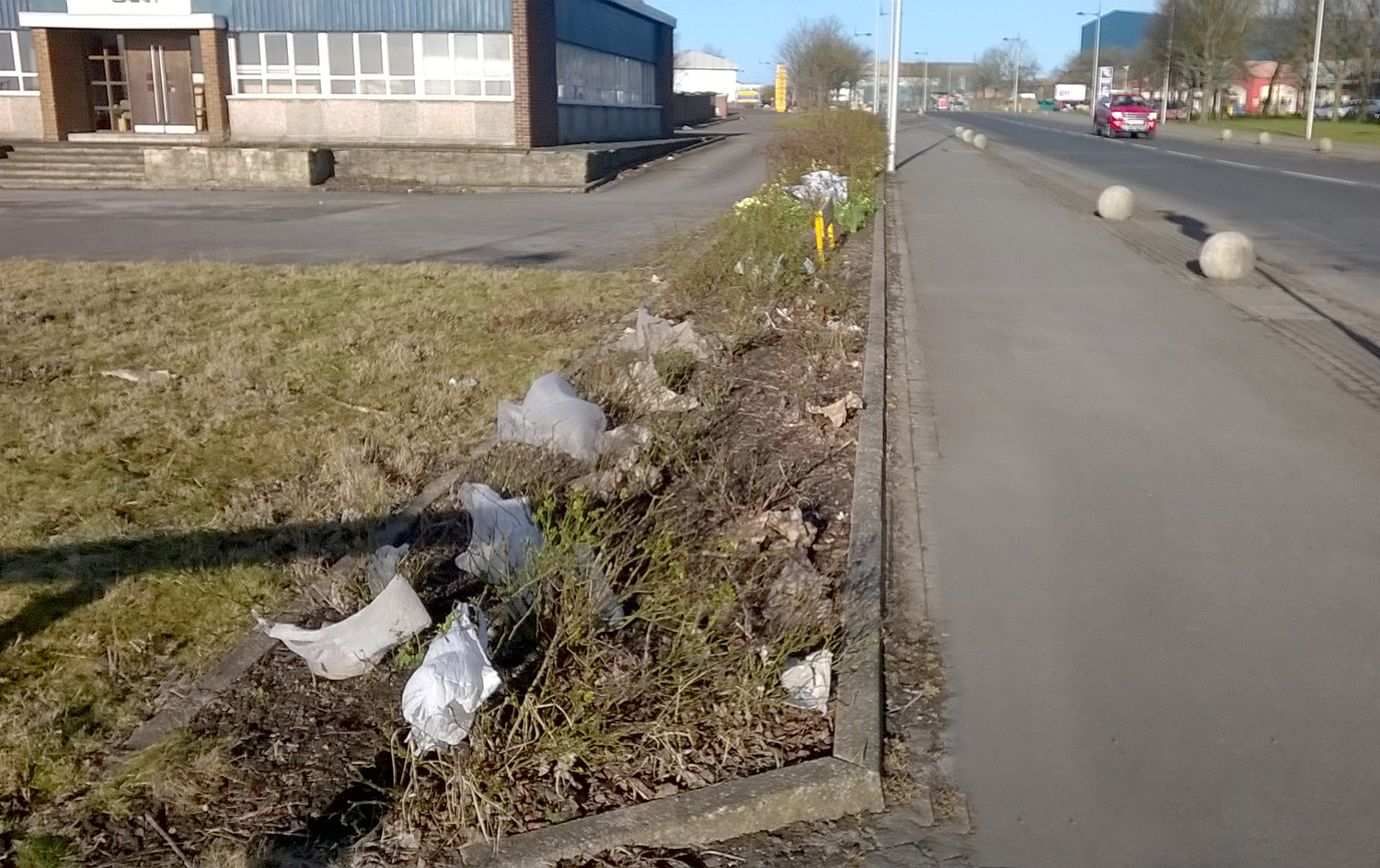 Eight in Court For Dropping Litter