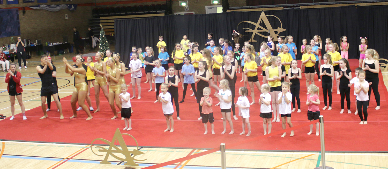 Fantastic Gymnastics Show at Leisure Centre