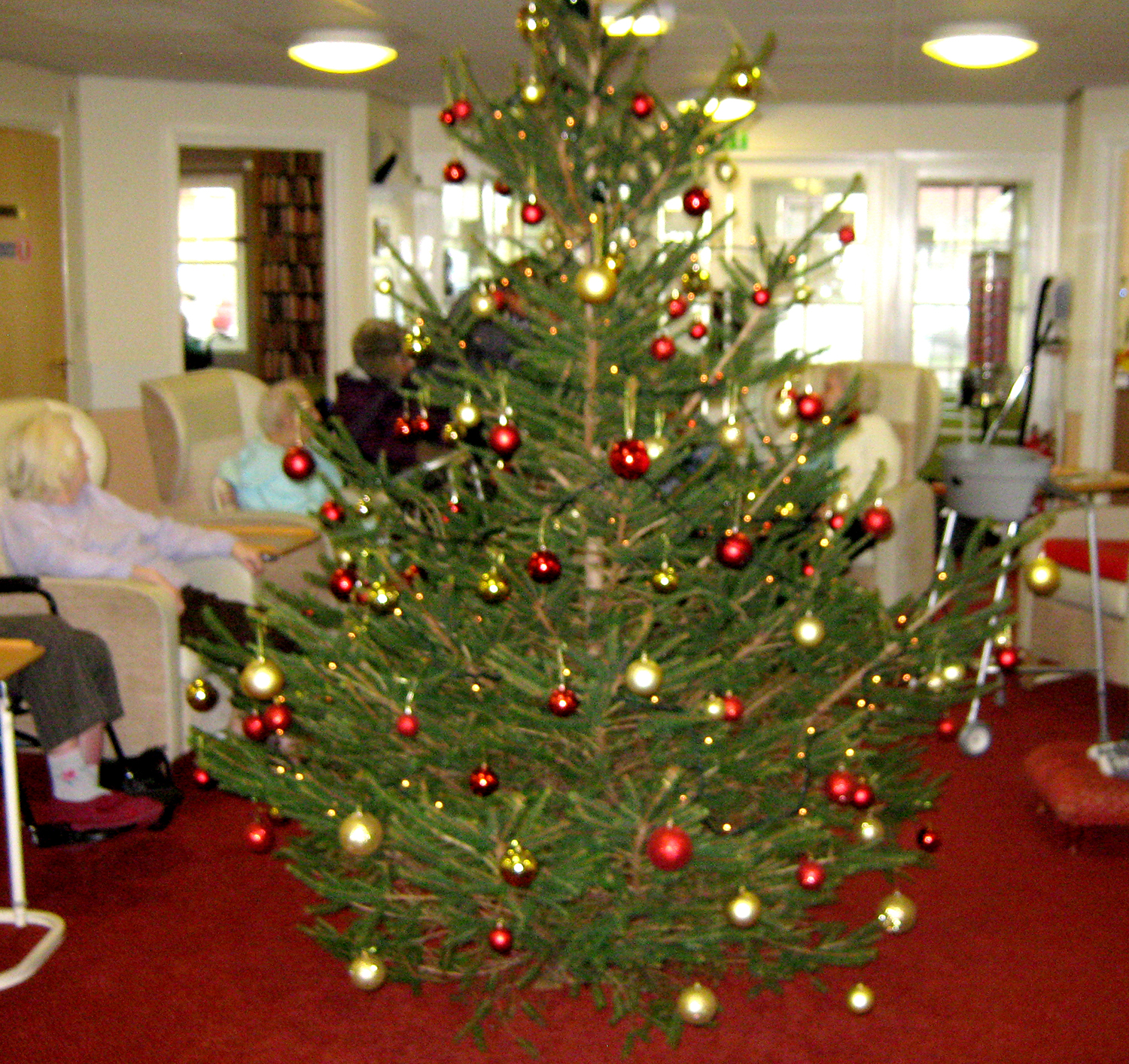 Care Home Christmas Services