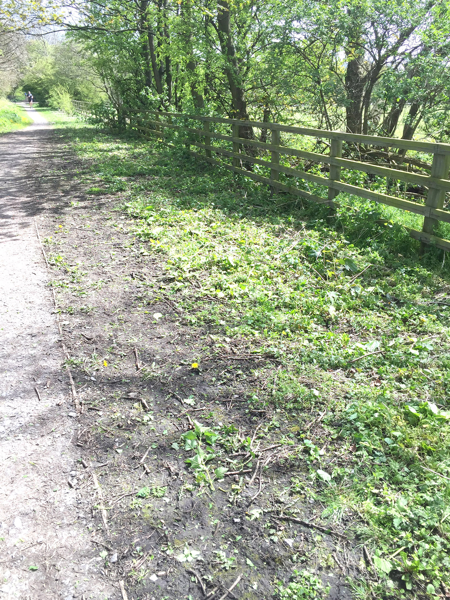Probation Service Ruins Town Nature Trail
