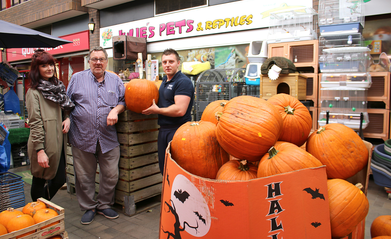 Hallowe'en Pumpkins