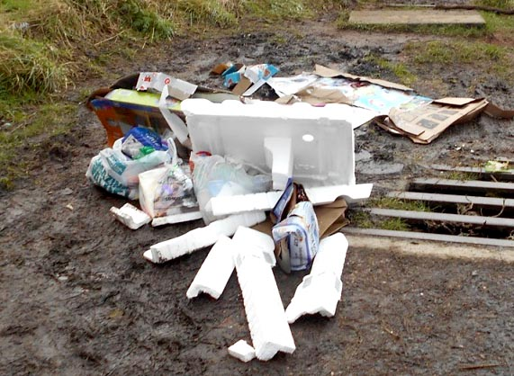 Woman Counting The Cost of Fly-Tipping