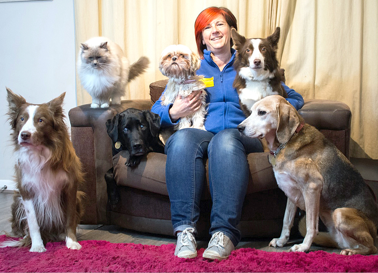 Sharon Has Adopted Four Dogs Over 10 Years