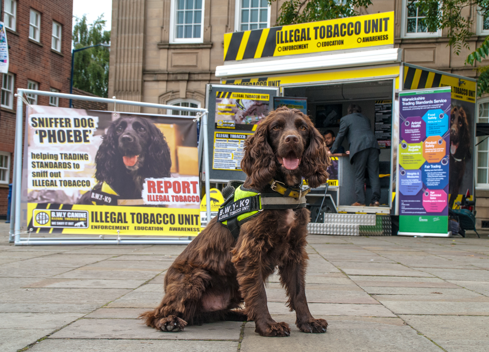 Detection Dogs Highlight Dangers of Illegal Tobacco
