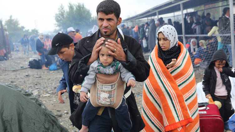 Refugee Resettlement Scheme Could be Extended
