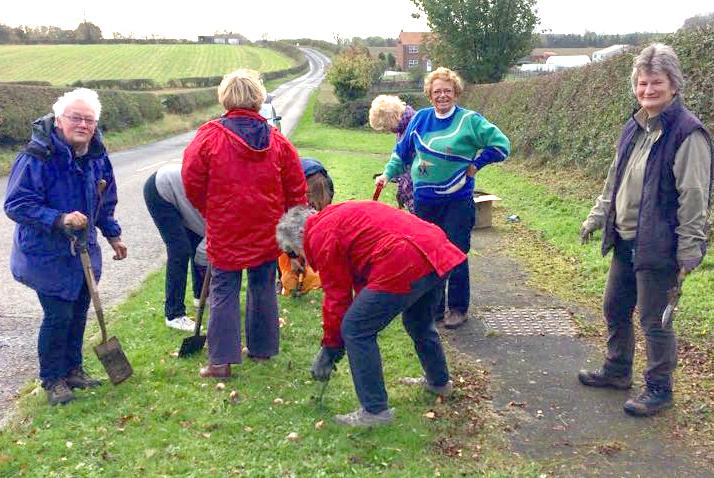 W.I. Members Volunteer to Plant Spring Bulbs