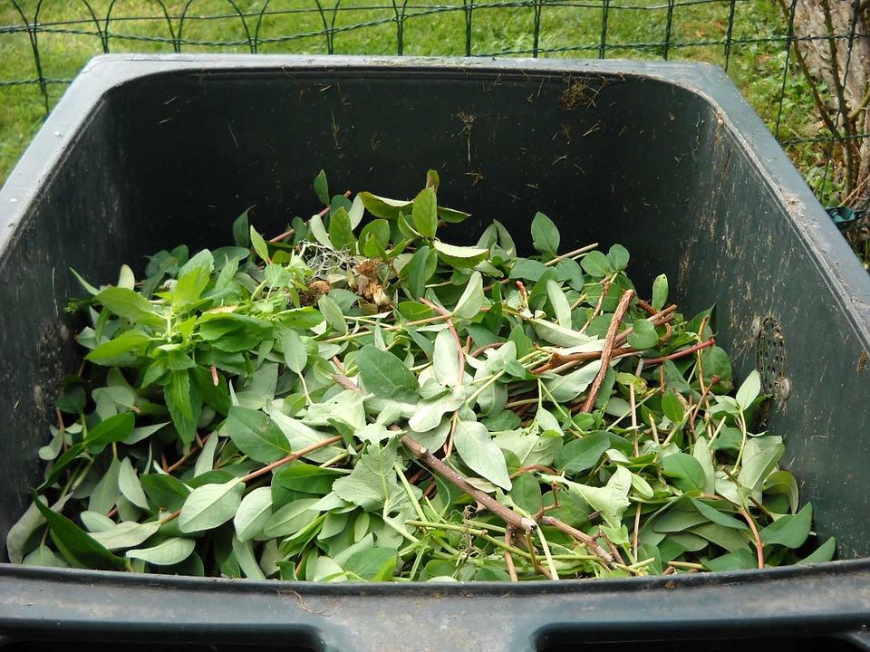 Garden Waste Collection Fees & the Alternative
