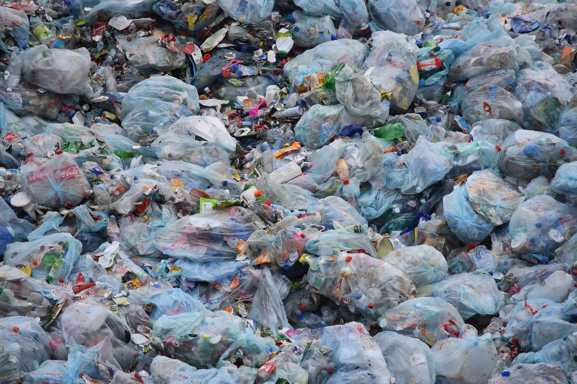 Opportunity to Learn About Reducing Waste in the Workplace