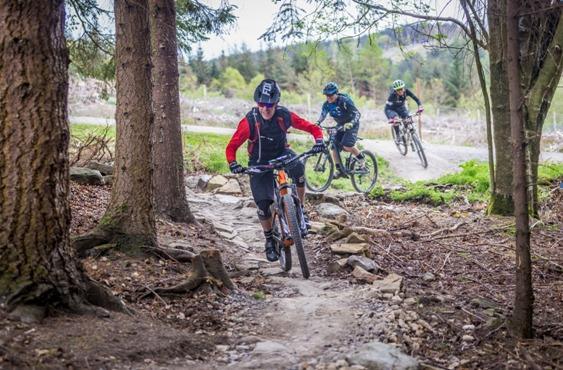 Hamsterley Mountain Bike Challenge