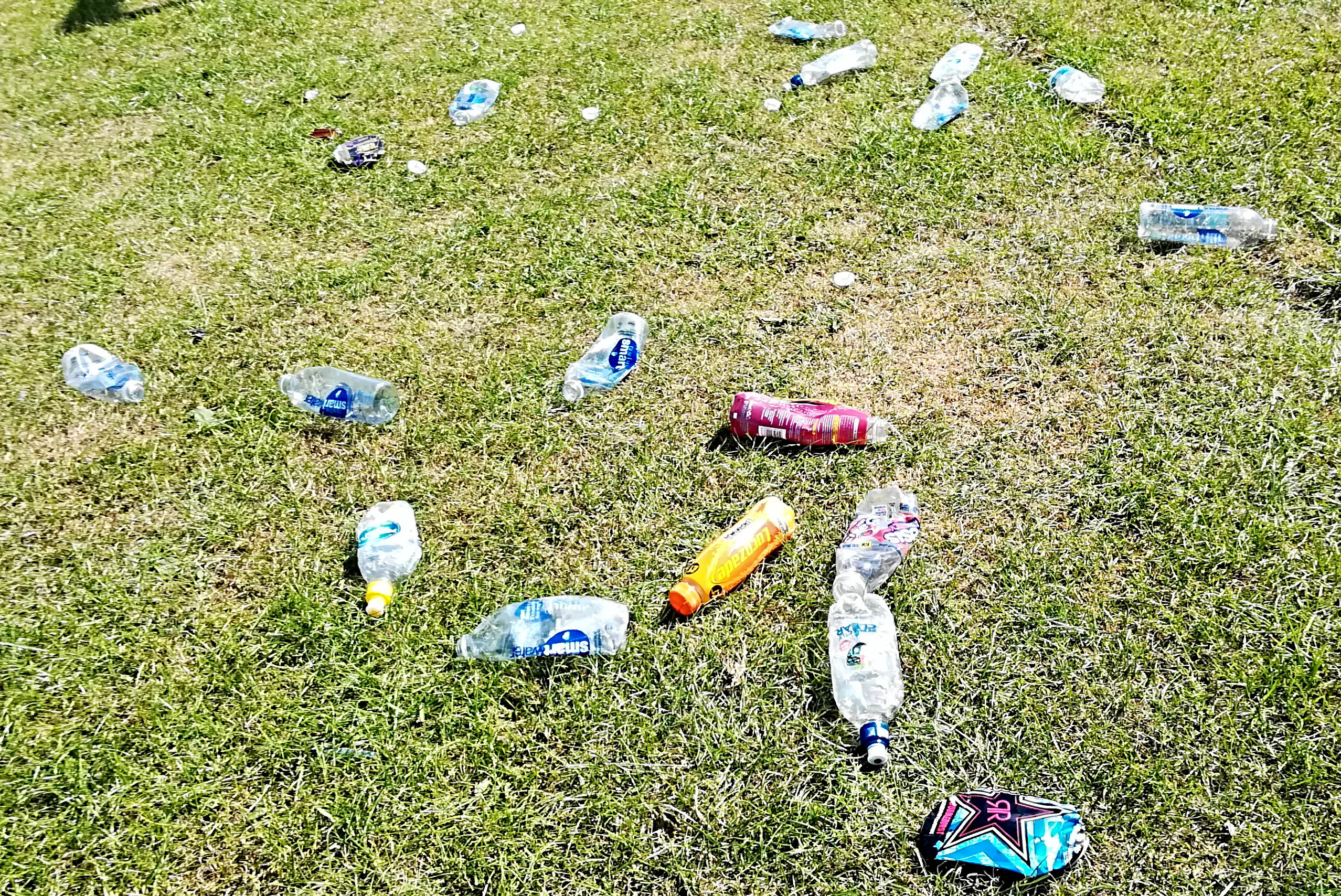 Please Stop Dropping Litter