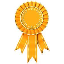 Top Award for Youthy Football