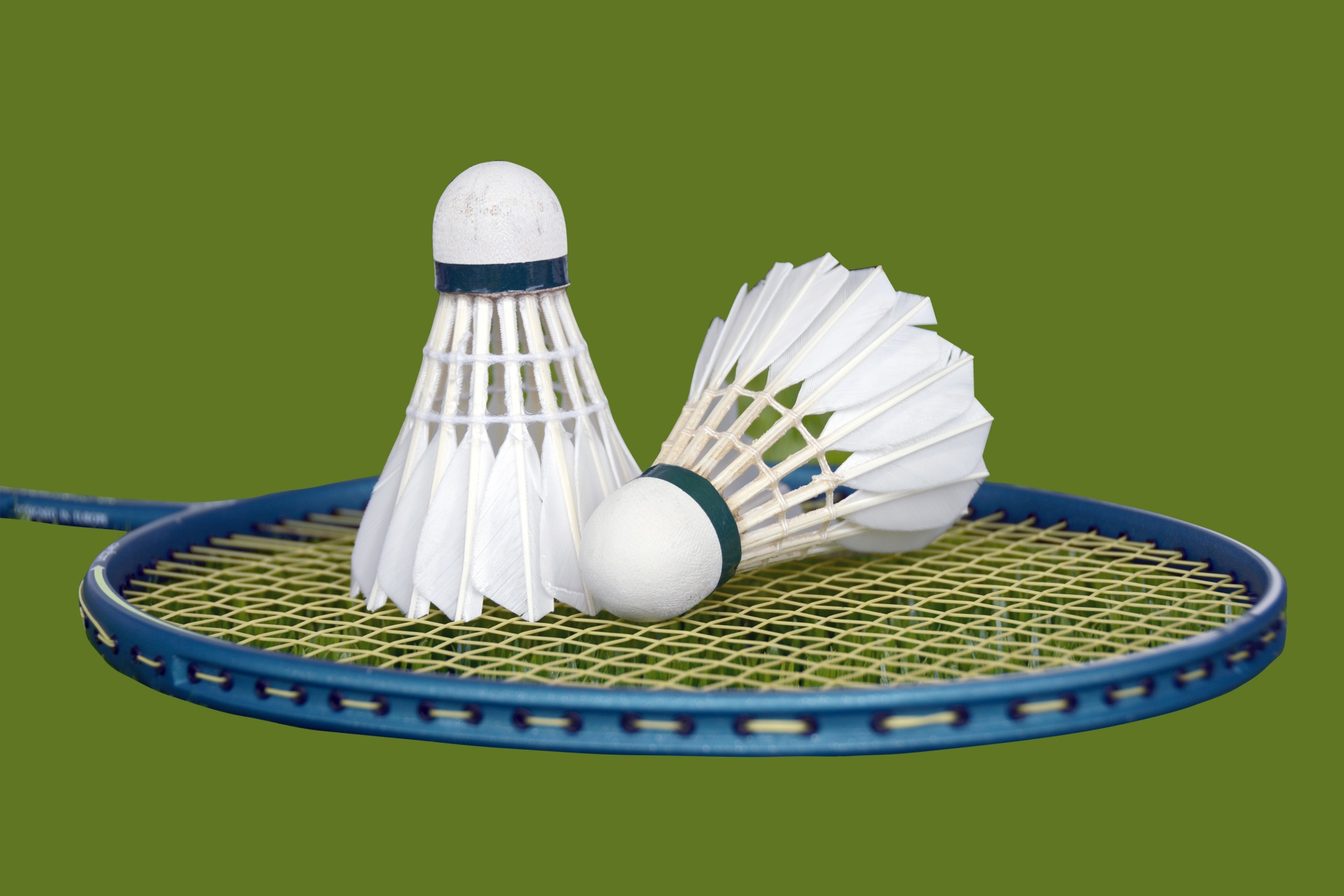 Badminton Beginners