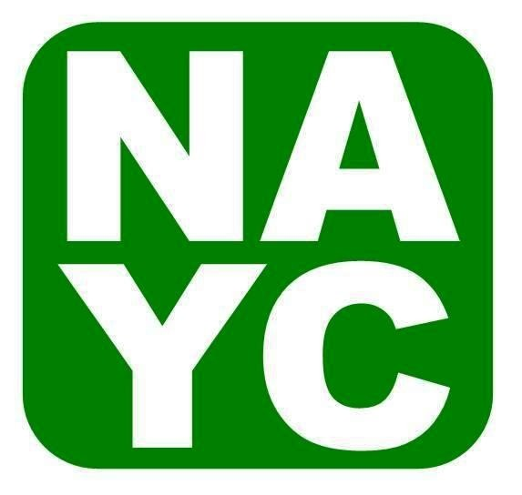 NAYCC – Chair's Report
