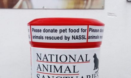 NASSL RESCUE DOGS