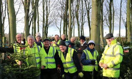 Donate Your Used Christmas Tree to Darlington Hospice