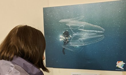 Volunteers Celebrate The Beauty of Our Oceans