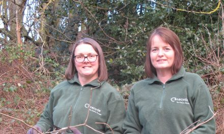 Still time to sign-up for 2020 garden waste collections