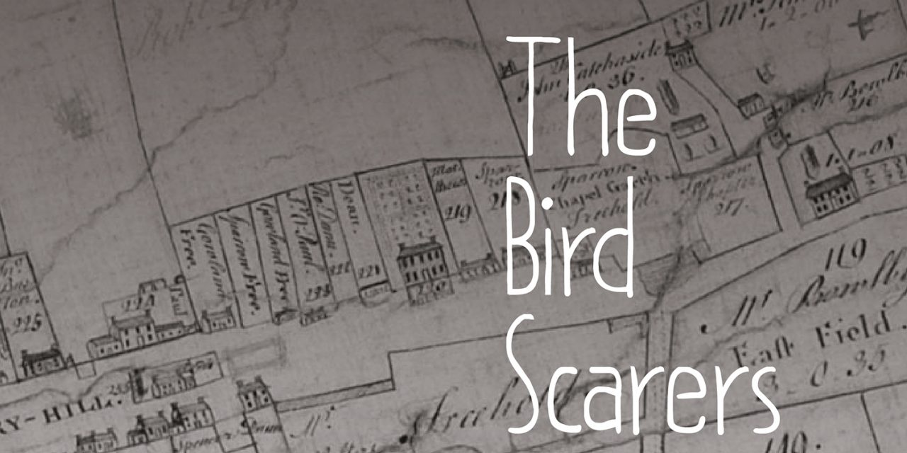 Arts Centre Welcome 'The Birdscarers'