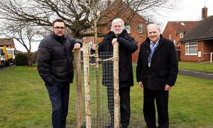 Thousands of Trees to be Planted Across the County
