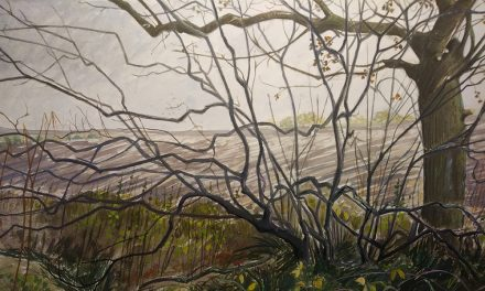 New Exhibition at Greenfield Arts