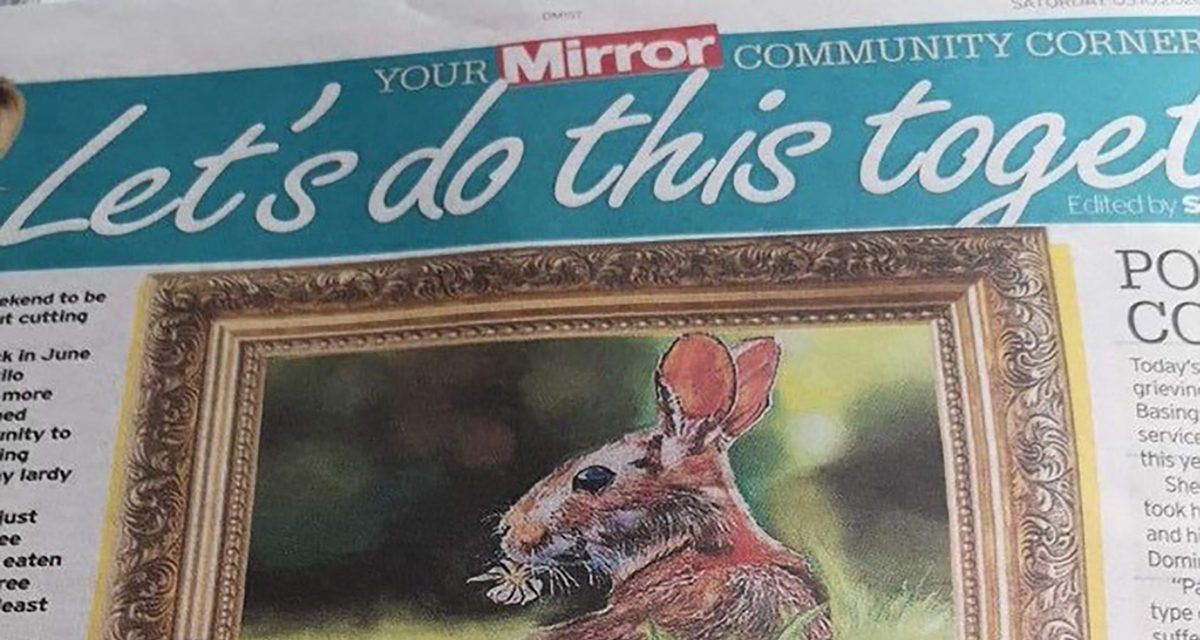 Local Artist Featured in Daily Mirror