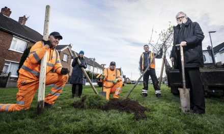Opportunity for Local Residents to Plant Trees in their Community