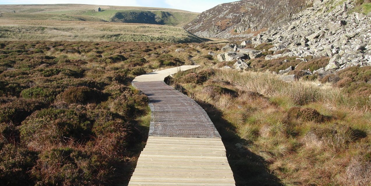Helicopter used to replace timber on countryside boardwalk