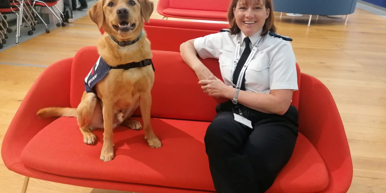A new four-legged recruit has joined the Durham Constabulary