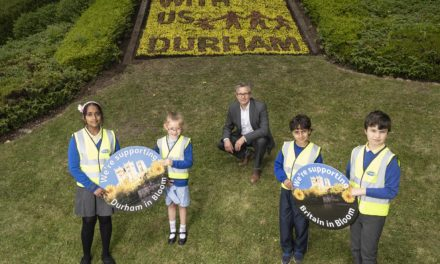 Flower bed display promotes fostering and Bloom campaign