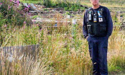 Council tackles arson hit dog track