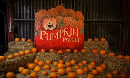 FAMILY FRIGHT FEST OFFERS HALLOWEEN FUN FOR ALL AGES